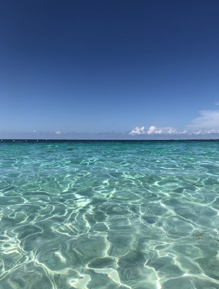 [旅ブログ]魅惑の島BAHAMASに行ってきました_1