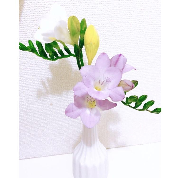 お家時間の癒し。花のある暮らしを楽しんでます_2