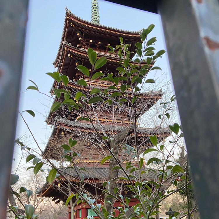 都内でプチ旅行気分♪江戸の風情溢れる上野東照宮で初詣!_6