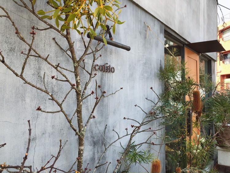お花のパワーに癒されて。可愛い!がとまらない〈お花×焼菓子×カフェ〉のお店「cotito」_1