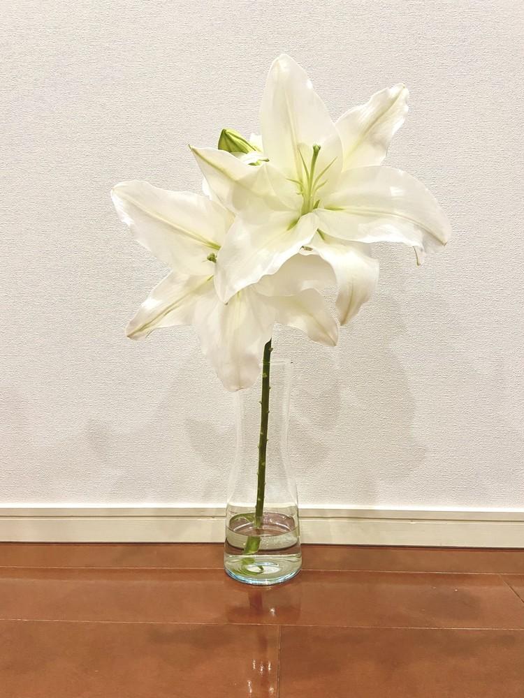 おうち時間はIKEAで充実!かわいいプチプラ花瓶が見つかります♡_4