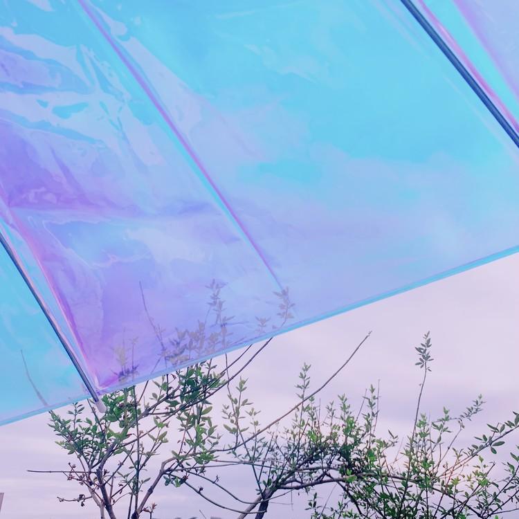 傘の中から見た風景