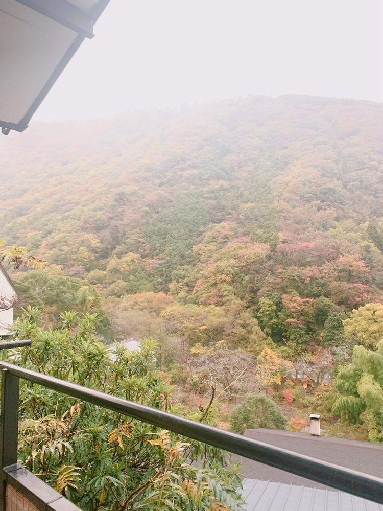 【週末TRIP】箱根温泉旅行〜茅ヶ崎ドライブ〜_1