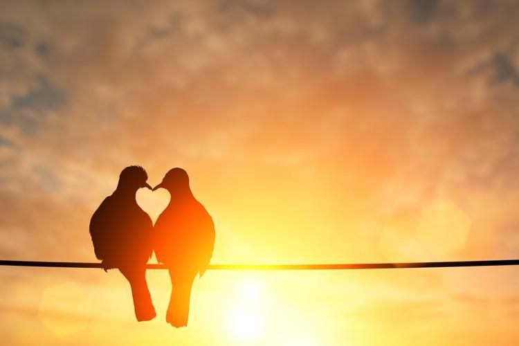 【おたより】結婚がしたいんじゃない! 恋愛がしたいんだ!【30代ジーコの、本気で婚活!ブログVol.59】_3