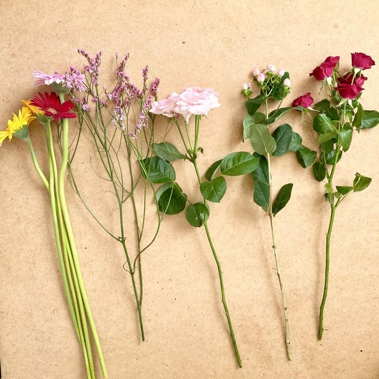 【エディターのおうち私物#36】1束¥390「ユニクロ(UNIQLO)」新オープンの原宿店やUNIQLO PARKで花やグリーンの販売をスタート!_5