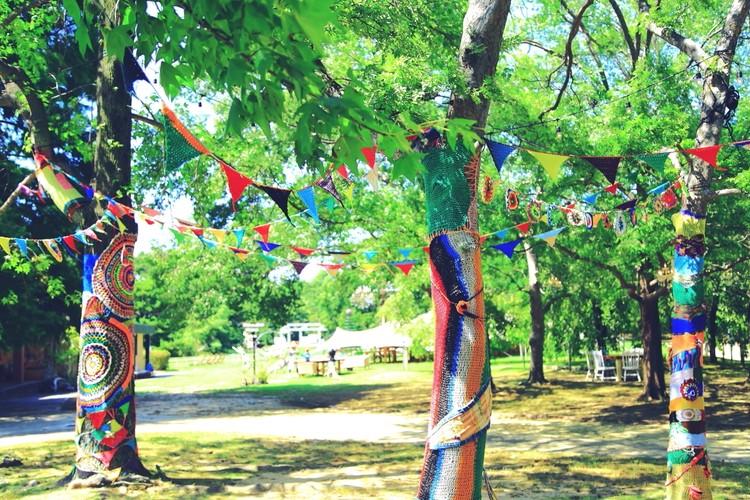 植物園内のグランピングカフェ。景色を楽しむお店へ③【関西のイケスポ】_3