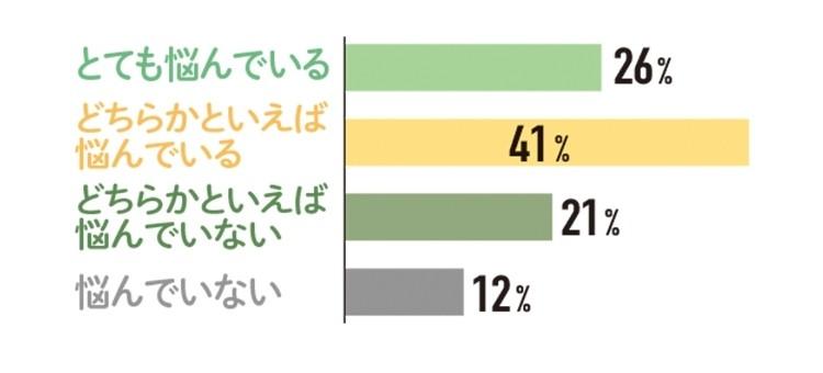 とても悩んでいる 26% どちらかといえば悩んでいる 41%   どちらかといえば悩んでいない  21%   悩んでいない   12%