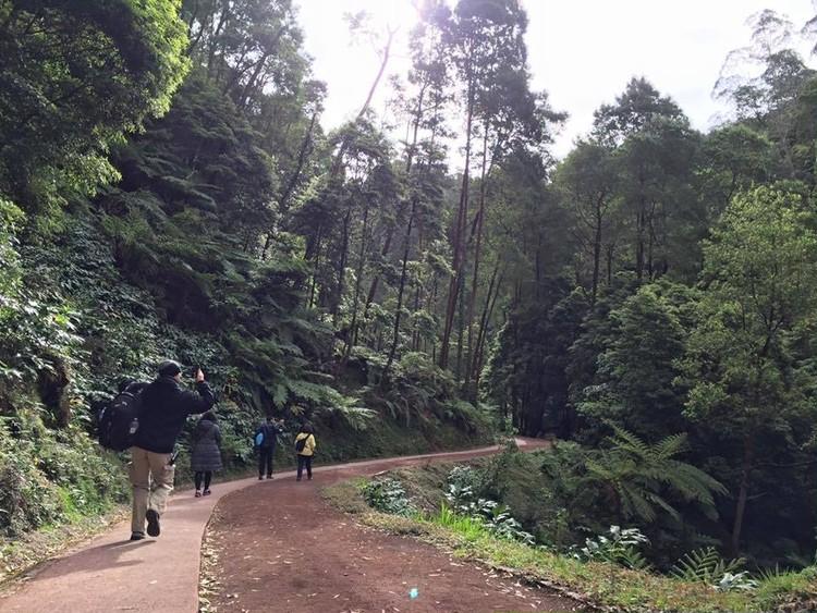 ジャングルの中の温泉♪_2