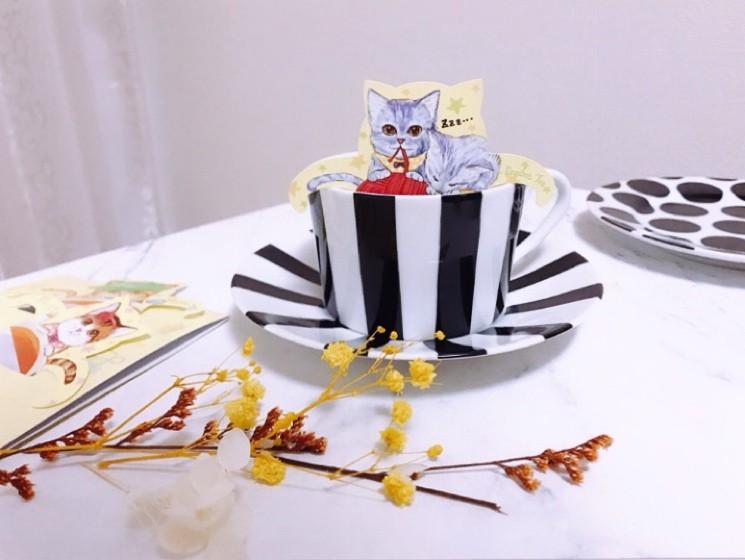 おうちで猫カフェ気分?!猫好きさん必見!可愛すぎるルイボス茶_4