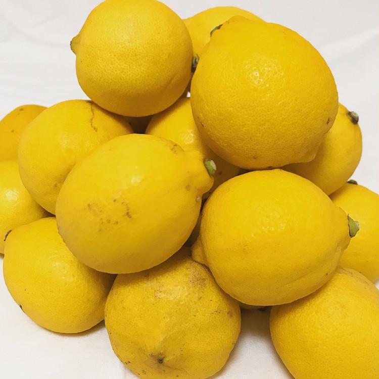 完全無農薬の皮まで食べれるレモンでビタミンを効率良く摂取_1