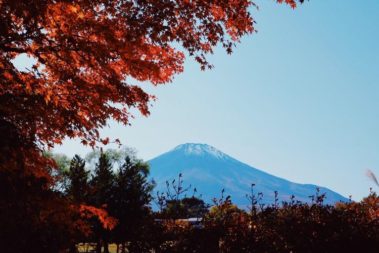Go to トラベルで富士山を眺めに♪ 観光編_5