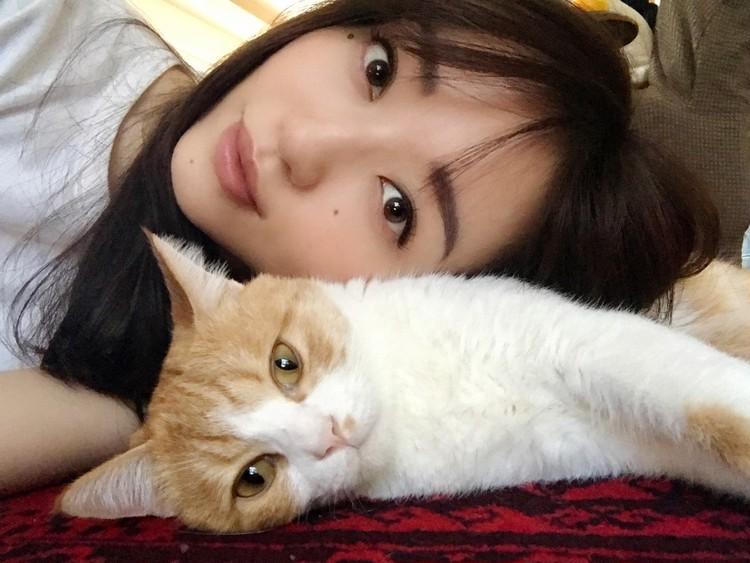 松島花さんの愛猫