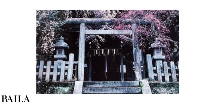 大豊神社(京都)