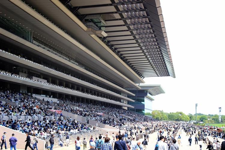 【週末お出かけ】有馬記念まであと3日!アナタもUMAJOデビュー<後編>_7