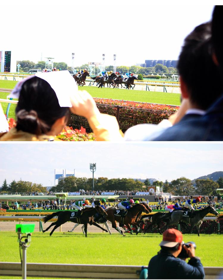 【週末お出かけ】有馬記念まであと3日!アナタもUMAJOデビュー<後編>_11