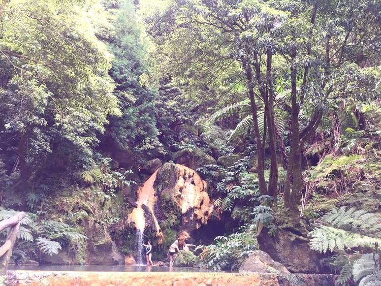 ジャングルの中の温泉♪_1