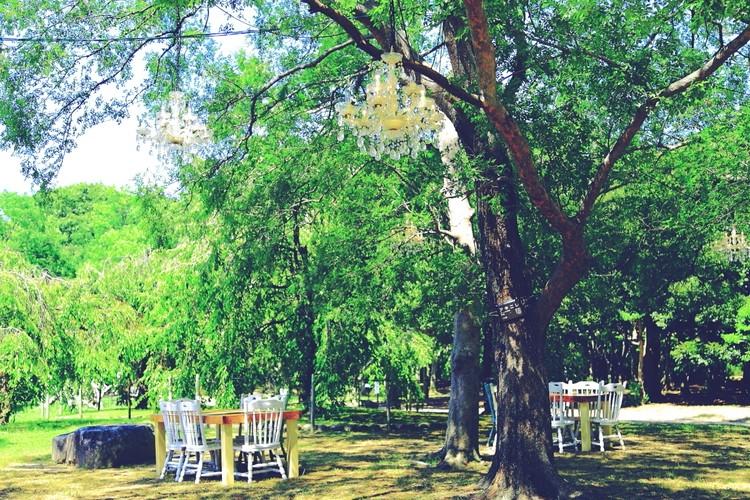 植物園内のグランピングカフェ。景色を楽しむお店へ③【関西のイケスポ】_2_5