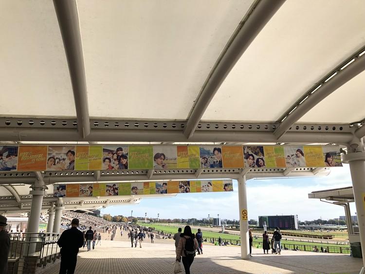 【週末お出かけ】有馬記念まであと6日!アナタもUMAJOデビュー<前編>_2