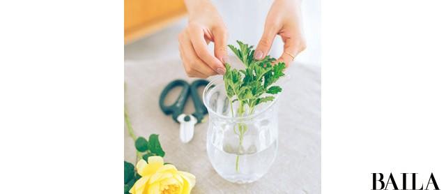 初夏のエネルギーに満ちたバラの生け方いろいろ【カトパンのあえて小さく飾る花レッスン】_5