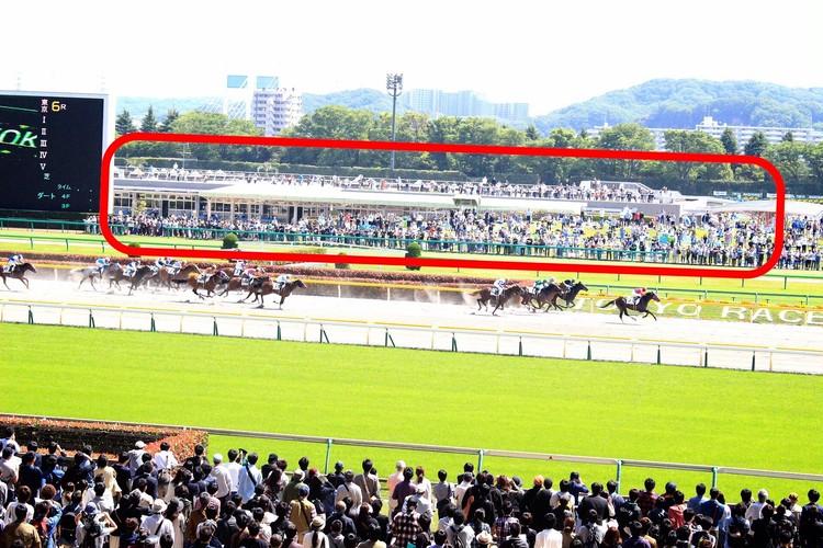 【週末お出かけ】有馬記念まであと3日!アナタもUMAJOデビュー<後編>_12