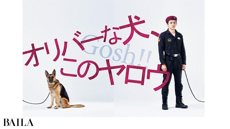 ドラマ10「オリバーな犬、(Gosh!!)このヤロウ」