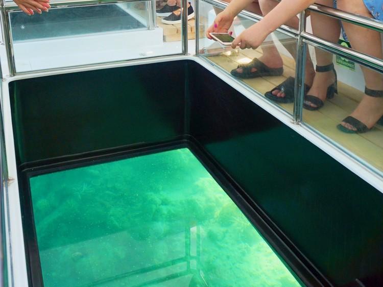 30代女子リゾート旅おすすめNo.1【コモド島 インドネシア】に冒険すべき理由14_2_8