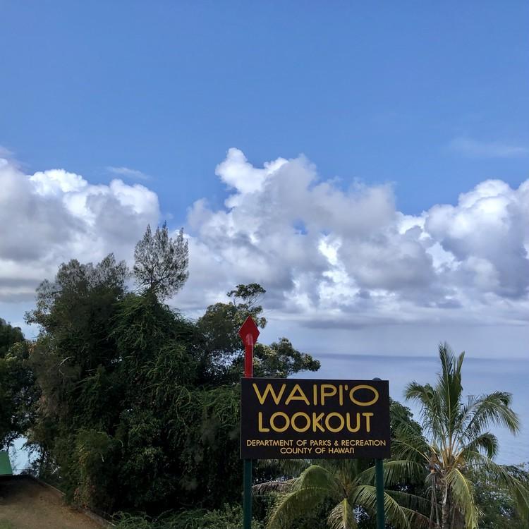 大自然の中で最高の星空が!【ハワイ島編②】_31