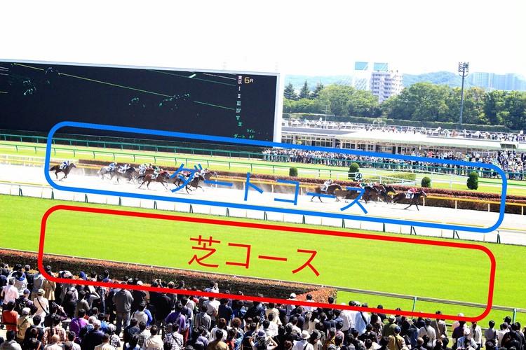 【週末お出かけ】有馬記念まであと3日!アナタもUMAJOデビュー<後編>_10