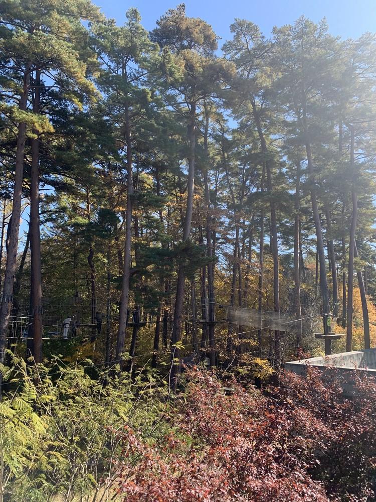 《星野リゾート》秋を満喫♡リゾナーレ八ヶ岳へ_3_2