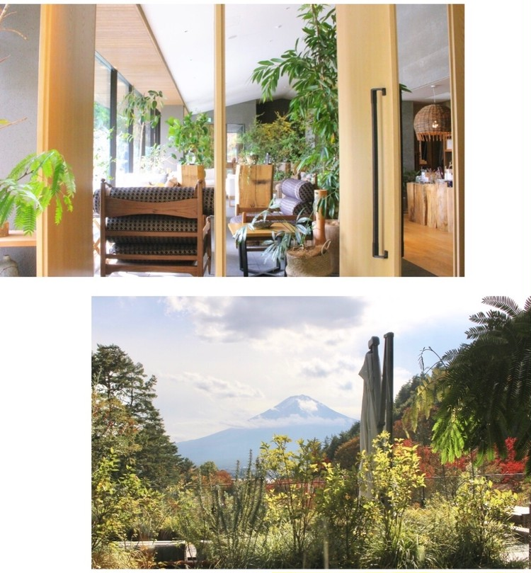 【GoTo】部屋から富士山♡森の中の隠れ家ホテルで贅沢stay_3