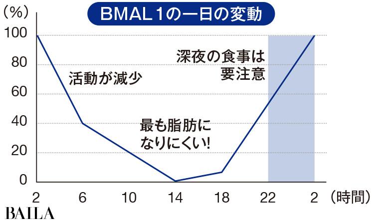 BMAL1の1日の変動