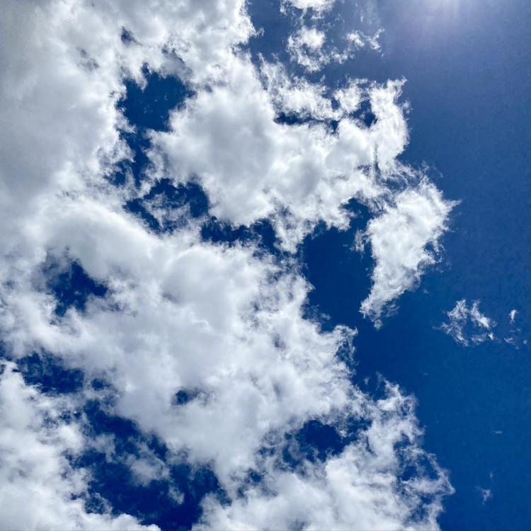 ユニクロ UNIQLO UVカット 紫外線対策 着る日焼け止め エアリズム