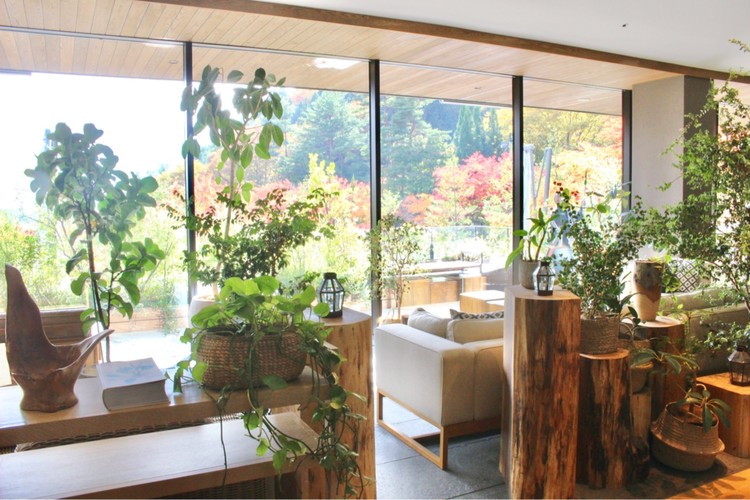 【GoTo】部屋から富士山♡森の中の隠れ家ホテルで贅沢stay_2