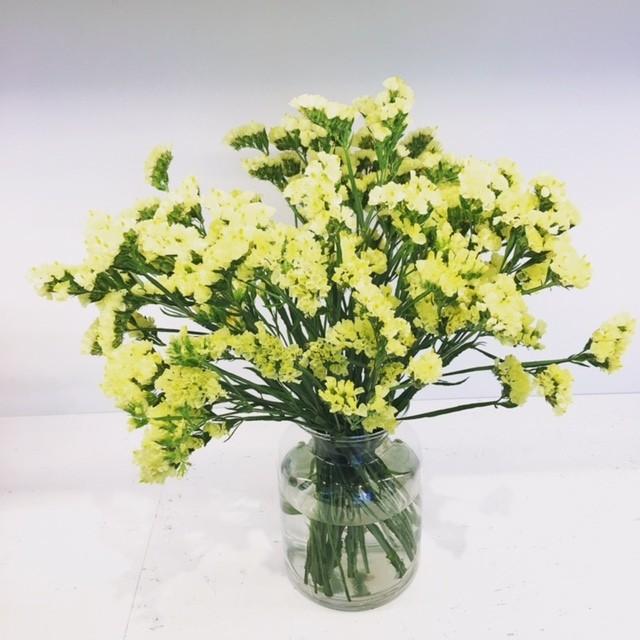 ファッション業界でいま大人気!【ディリジェンスパーラー】の花に注目!_2