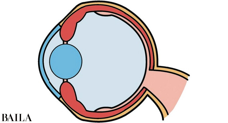 【スマホ老眼チェックリスト診断】最近「目」疲れてませんか?_2