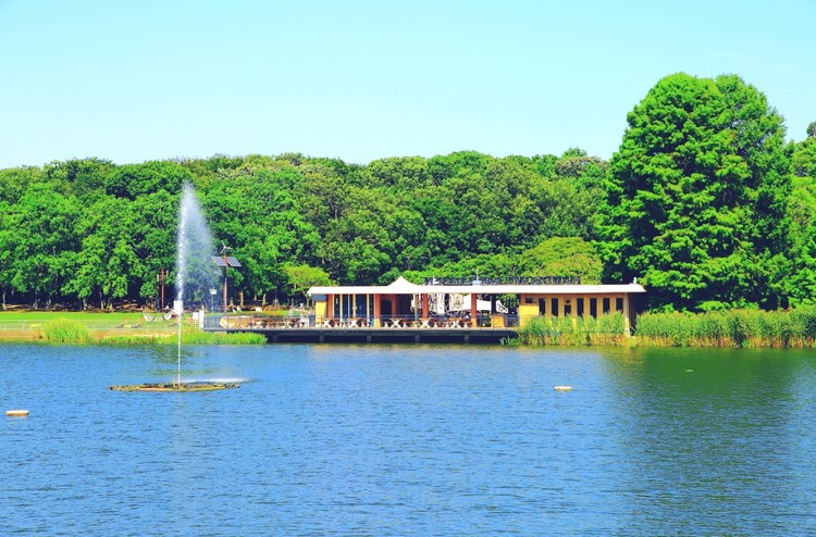 植物園内のグランピングカフェ。景色を楽しむお店へ③【関西のイケスポ】_1