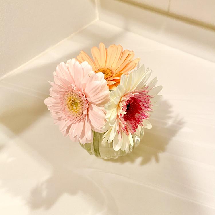 【お花のサブスク】結局どこがときめく?お花のある暮らしで分かったこと【おうち時間】 _3