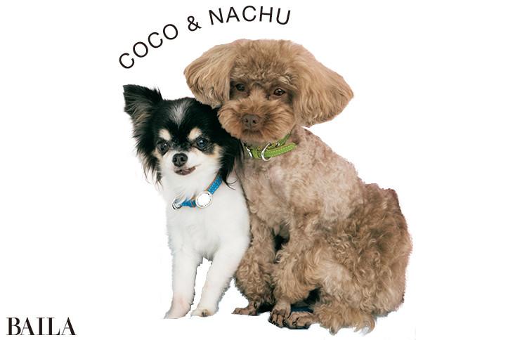 COCO&NACHU