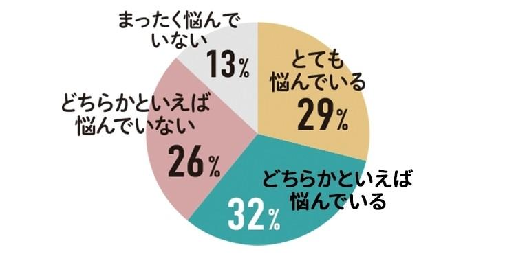 とても悩んでいる 29% どちらかといえば悩んでいる 32%  とても悩んでいない 26% まったく悩んでいない 13%