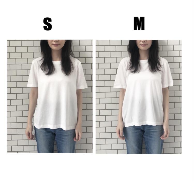 ベーシックTシャツ比較