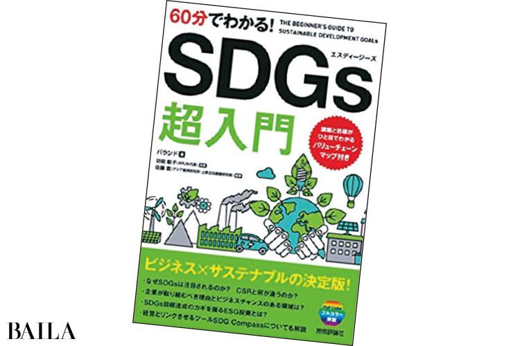 『60分でわかる!SDGs超入門』技術評論社¥1080