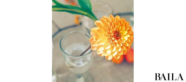 一輪で映える花でホムパの食卓をドレスアップ【カトパンのあえて小さく飾る花レッスン】_4_3