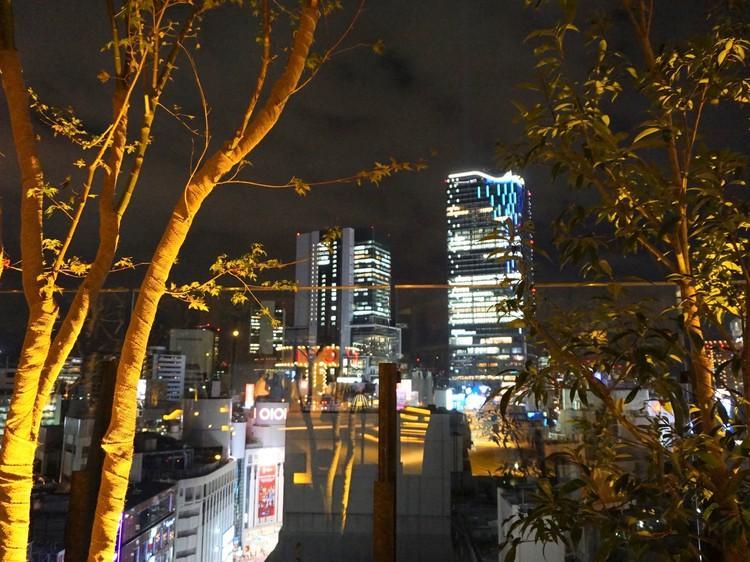 【おかえり♡渋谷パルコ】大人女子が1200㌫楽しむためのエディターによるパーフェクトガイド_33
