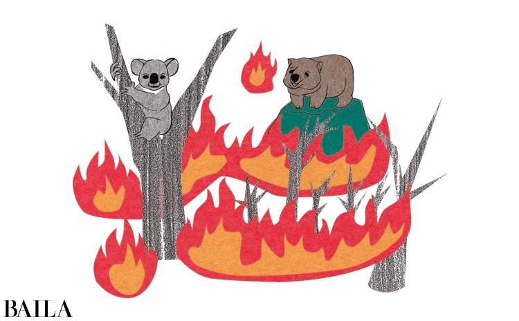 オーストラリアの大規模火災に南極や北極の温暖化、日本各地の台風の被害……。