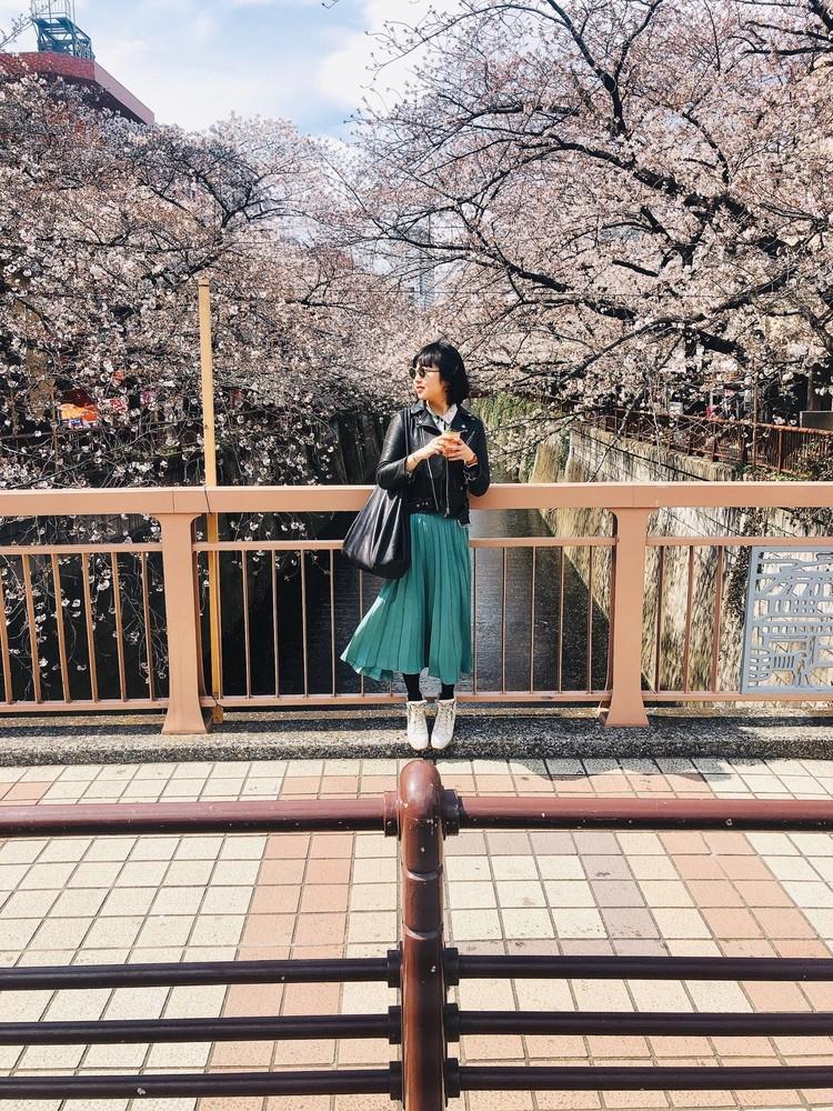 外出自粛になる前の目黒の桜、アスファルトにぽろぽろ落ちていく様がロマンチックでした。おやすみなさい。