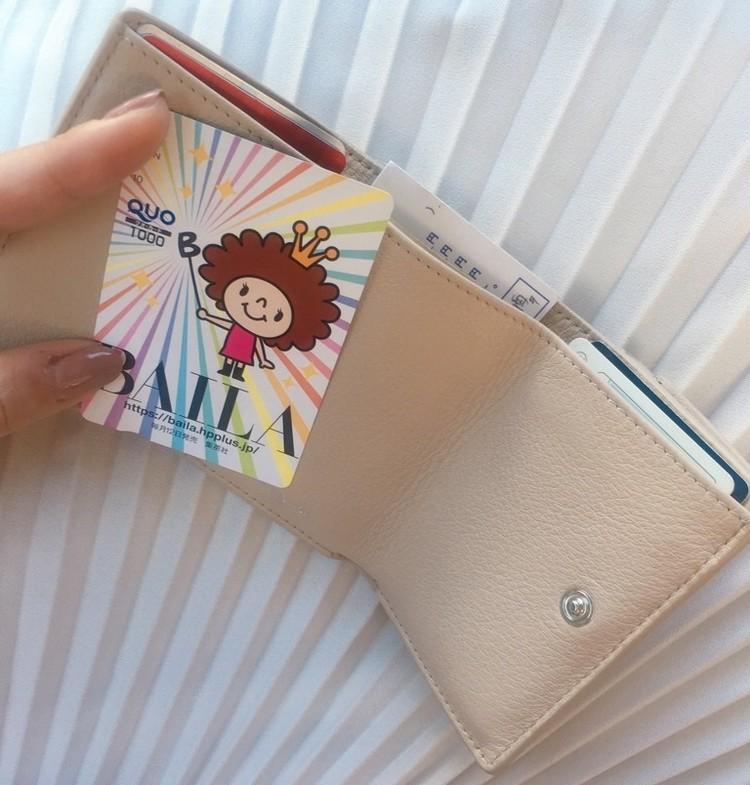 お財布の話。マイベストちい財布_2