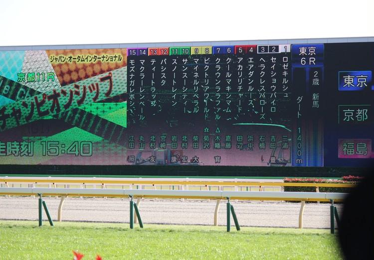 【週末お出かけ】有馬記念まであと3日!アナタもUMAJOデビュー<後編>_8