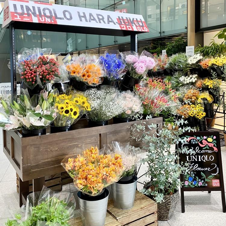 【エディターのおうち私物#36】1束¥390「ユニクロ(UNIQLO)」新オープンの原宿店やUNIQLO PARKで花やグリーンの販売をスタート!_2