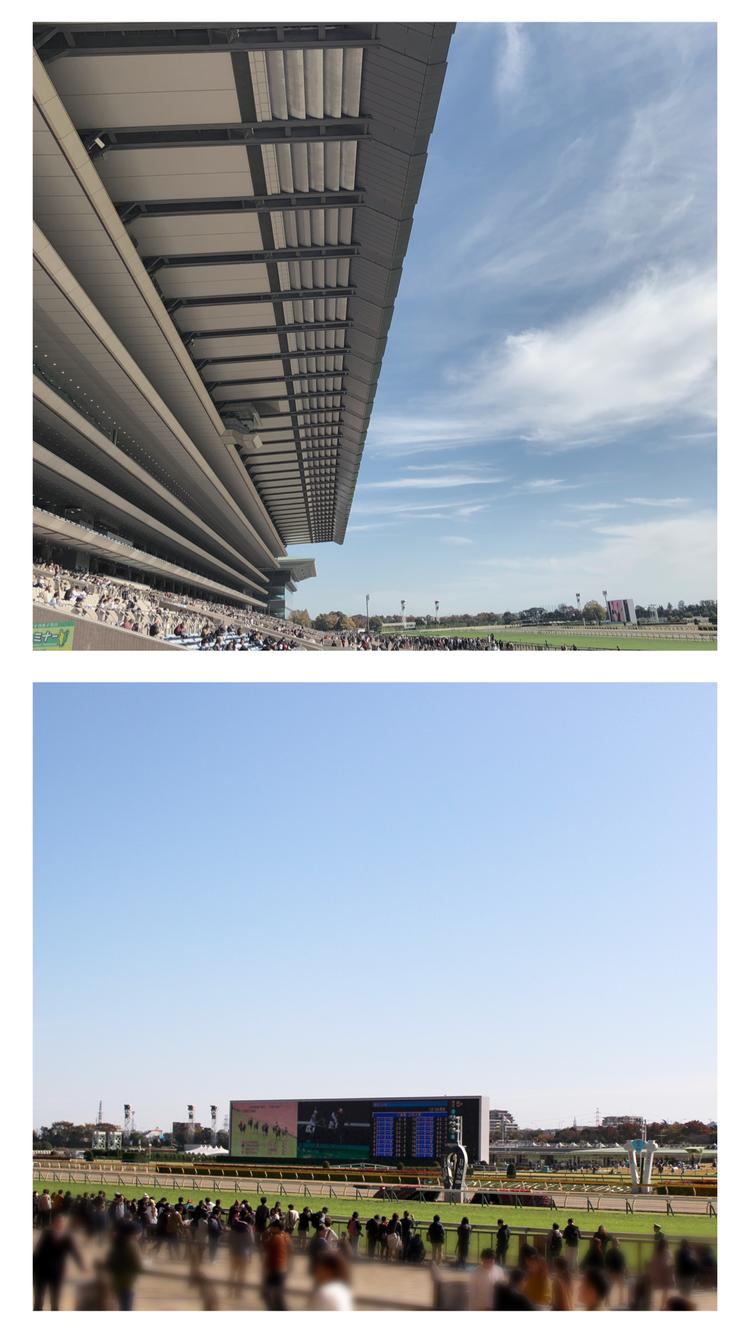 【週末お出かけ】有馬記念まであと6日!アナタもUMAJOデビュー<前編>_3