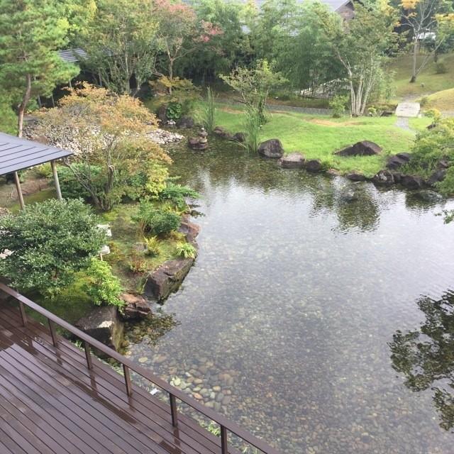 「湯」と「食」で秋を感じる!河津の隠れ名宿「玉峰館」へ_2_9